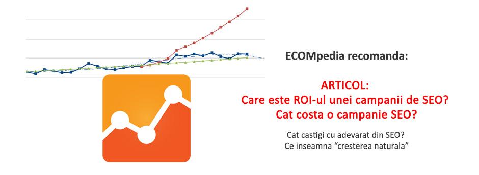 http://ecompedia.ro/care-este-roi-ul-unei-campanii-de-seo-cat-costa-o-campanie-seo.html