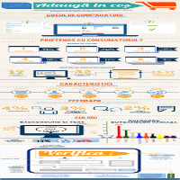 [infografic] Cosul de cumparare al unui magazin online, o experienta romaneasca