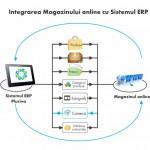 Studiu de piata: 6% dintre magazinele online din Romania sunt integrate cu sistemul de gestiune ERP propriu