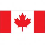 Canada: in 2016, doar 2% din cumparaturi s-au facut online