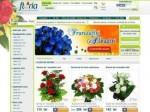 Floria.ro vinde flori online de peste 1 milion de euro in 2013