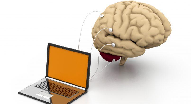 Experienta clientului in E-commerce.  Ce ne spune creierul limbic?