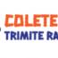 Colete Online