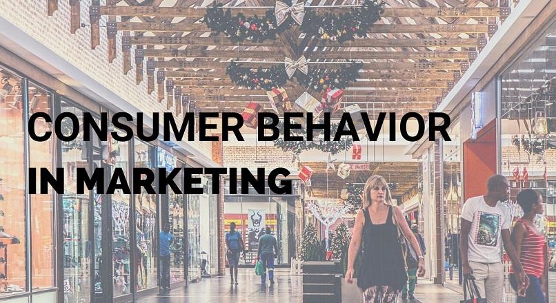 Comportamentul consumatorului in marketing – modele, tipuri, segmentare