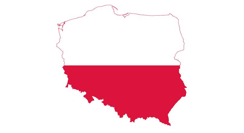 Polonia: in S1 2020, au aparut 5.500 de magazine online noi